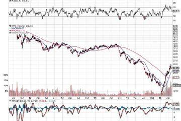 SPDR S&P Metals and Mining