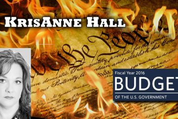 KrisAnne Hall,Constitutionalist,constitution,liberty,wearechange,federal government,budget resolution,Jennifer Briney,Congressional Dish,2016 election,election 2016,2nd amendment,gun rights,no fly list,terror watch list,Clinton lies,Crooked Hillary