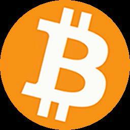 Bitcoin Round Logo