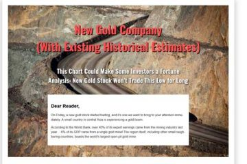 New Gold Company