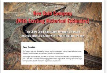 New Gold Company