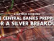 Are Central Banks Prepping For A Silver Breakout! - Bix Weir Interview