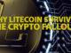 litecoin, blockchain, cover