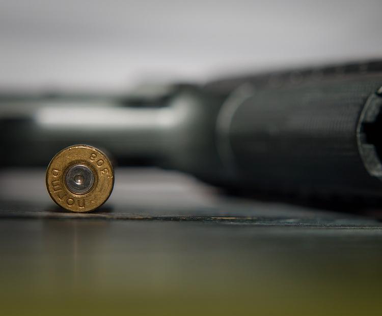ammunition, gun sales