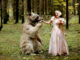 The Fed is Dancing with Bears in the Woods of Monetary Policy - Image Courtesy of @VICTORLEONARDIB