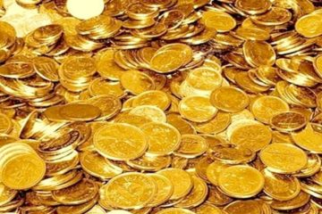 The Gold Coin Dilemma, Politics and Nonsense
