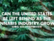 Can The United States Be Left Behind As The Cannabis Industry Grows? Chris Walsh Interview