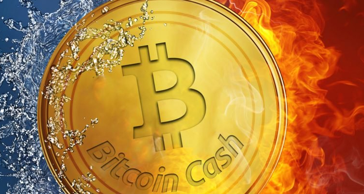3 Takeaways from the Bitcoin Cash Skyrocket!