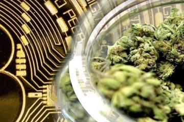 marijuana-cryptos