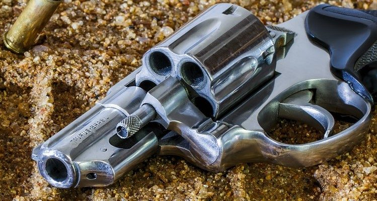 Florida gun control laws
