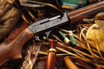Remington, gun control