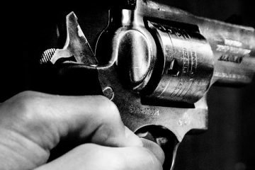firearms manufacturers, gun sales
