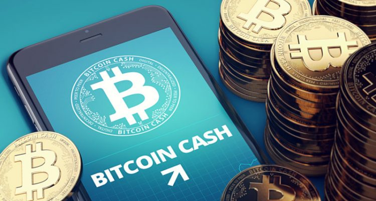 Bitcoin Cash Up Over 50% - Hard Forks and Coin Burning?