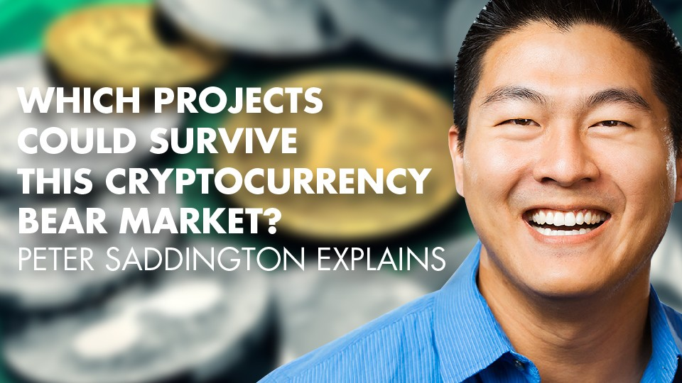 Which Projects Could Survive This Cryptocurrency Bear Market? – Peter Saddington Explains