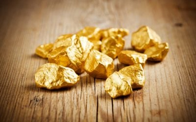 How Much Gold Should You Hold?