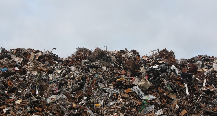 The Trash Economy Signals Doom for the Real One
