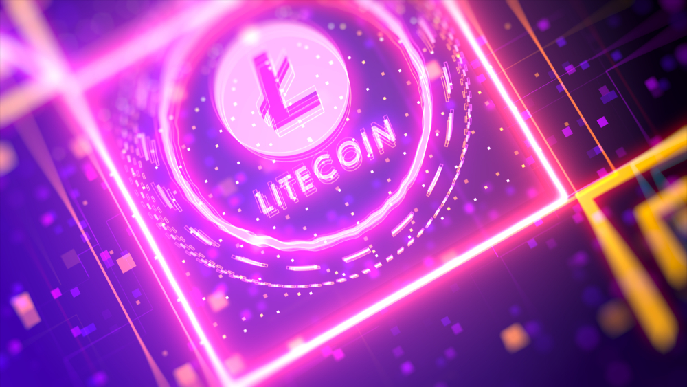 LONG-TERM LITECOIN HOLDING! More Investors Than Ever are Holding LTC Funds!