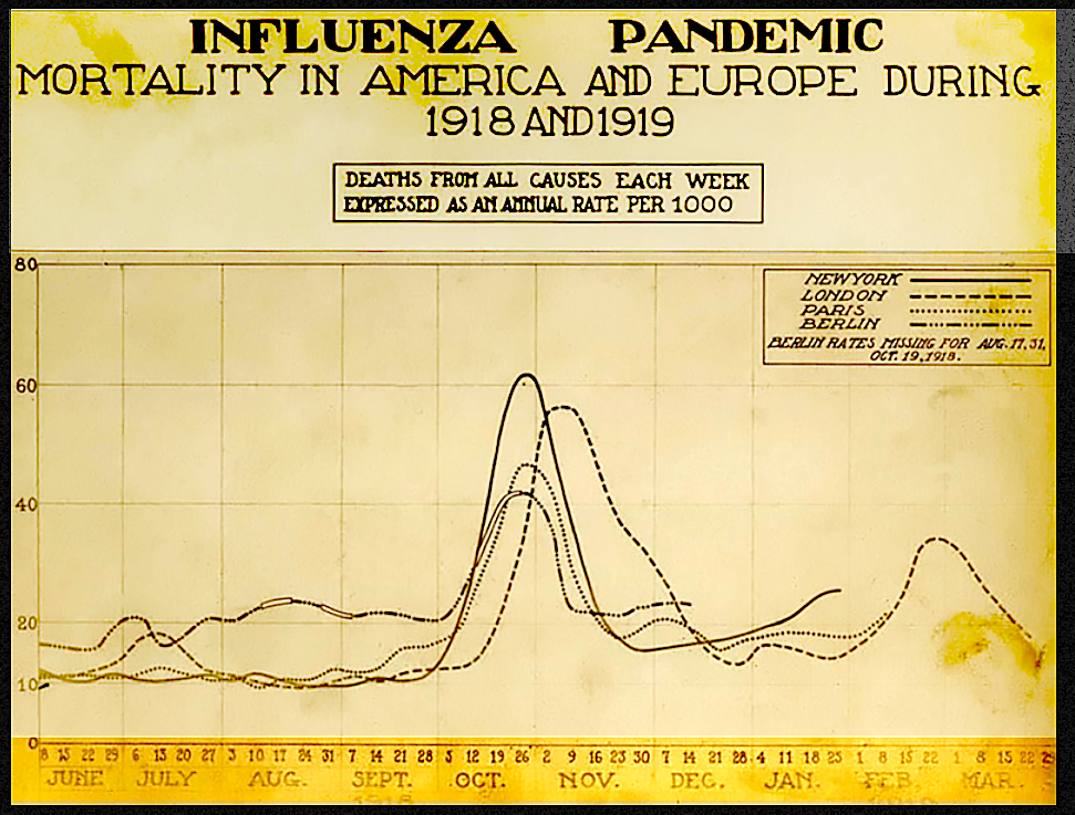 1918 Pandemic Excess Deaths Chart