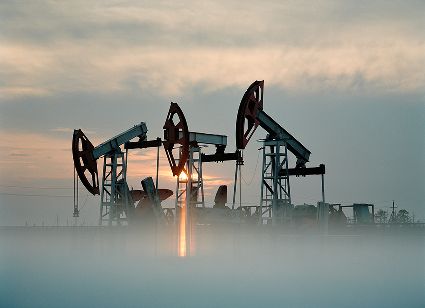 Cathie Wood Predicts That the Oil Price Will Go to $12